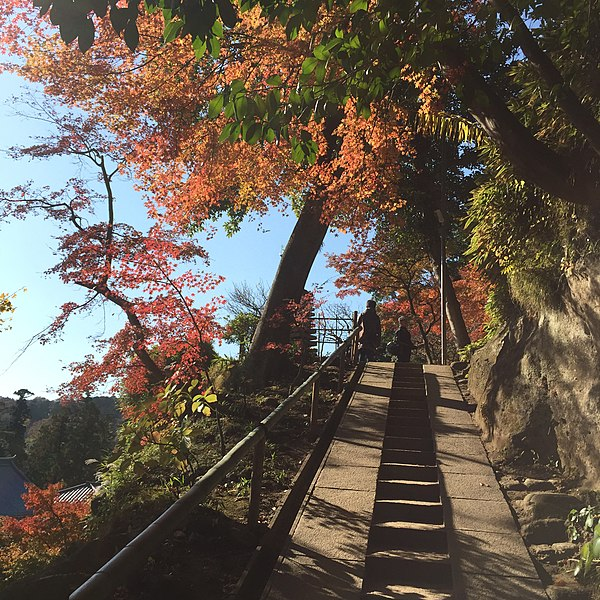 File:Yamanouchi, Kamakura, Kanagawa Prefecture 247-0062, Japan - panoramio (6).jpg