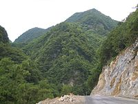 Shennongjia - forest area in the Chinese province of Hubei