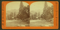 Yosemite Falls Hotel, Yosemite Valley, Cal, by Hazeltine, M. M. (Martin M.), 1827-1903.png
