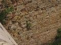 Zámek (Kostelec nad Černými lesy), zeď příkopu.JPG