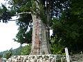 Zensyouji003.JPG