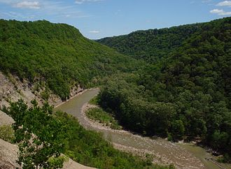 Zoar Valley - Most of Zoar Valley's old-growth forests occur within the gorge and along the valley's steep slopes.