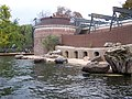 Zoo 203.jpg