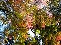 Zuihouden(瑞鳳殿・伊達家霊廟) - panoramio - Fumihiko Ueno (1).jpg