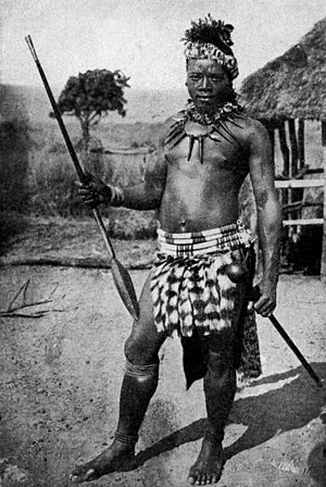 Impi - Zulu warrior armed with the iklwa stabbing spear (assegai) and iwisa club (knobkerrie). His kilt is of genet tails