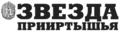 Zvezda Priirtish'ja (Звезда Прииртышья) logo.png