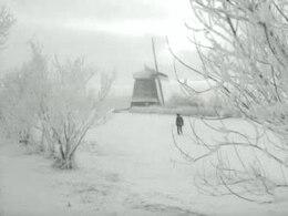 Bestand:Zware dooi na strenge winter.ogv