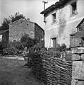 """""""Lesa"""" ob gnojniku, zadaj hiša, Kovčice 1955.jpg"""