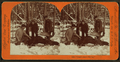 """""""There's where I hit 'im."""", from Robert N. Dennis collection of stereoscopic views 2.png"""