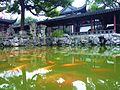 ·˙·ChinaUli2010·.· Shanghai - panoramio (89).jpg