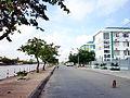 Đường Nguyễn Thanh Sơn.jpg