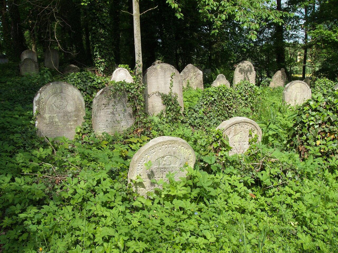 Židovský hřbitov Tučapy - staré náhrobky.jpg