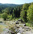 Абхазия - panoramio (1).jpg