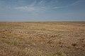 Бескрайняя степь к востоку - panoramio.jpg