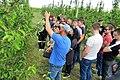 Вирощування яблуні 5.jpg