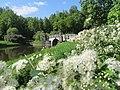 Все цветет и пахнет у вод реки Славянка.jpg