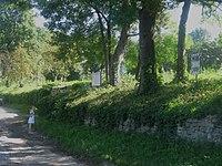 Голозубинецький---парк.jpg