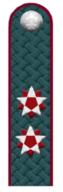 Государственный советник РФ 2 класса ФНС РФ.png