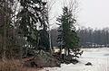 Зимний парк Монрепо.jpg