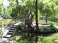 Краснокутський дендропарк2 16 июня 2008 автор Ірина Кізім Харків.jpg