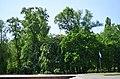 Наводницкий парк в Киеве. Фото 69.jpg