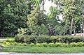Территория городского сада в Киеве. Весна 2019. Фото 24.jpg