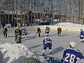 Хоккейная площадка.jpg