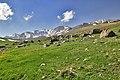 منظره ای در دامنه های سبلان A view of Sabalan mountain - panoramio.jpg
