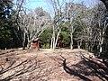 東吉野村小川 小川城址・主郭 Main region, ruins of Ogawa castle 2011.2.22 - panoramio.jpg