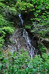 白岩の滝 - panoramio (21).jpg