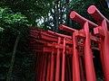 稲荷大明神の鳥居の列 - panoramio.jpg