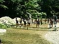 鮎つかみ - panoramio - yokoyokoi.jpg