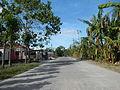 00002jfSan Manuel Villa Bacolor Batang Batang San Pascual Tarlac Cityfvf 21.JPG