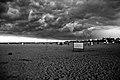 01BesantNagar&Beach.jpg