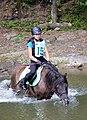 02018 0602 Reiten auf den Huzulen Pferden in Rudawka am Wisłok.jpg