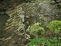 """0202 Река """"Кабачок"""". (Туапсинский р-н. 44°11'33.4""""N 38°57'23.0""""E).jpg"""