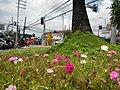 0305jfOrtigas Avenue Santolan Road Streets Landmarks San Juan Quezon Cityfvf 09.jpg
