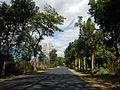 09376jfBinalonan San Manuel Pangasinan Barangays Roads Landmarksfvf 12.JPG