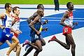 1500 m semi final Berlin 2009.jpg
