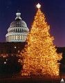 1993 U.S. Capitol Christmas Tree (31657783612).jpg