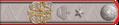 2-09z. Врач Императорской военно-медицинской академии, лейб-медик Николая II, статский советник, 1898–1902 гг.png