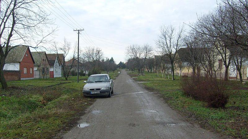 File:2007.12.13. Bácsfeketehegy Feketić Feketitsch - Dozsa György utca - Doza Djerdja - panoramio.jpg