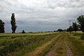 2009-06-09-r1-dessau-koethen-by-RalfR-35.jpg