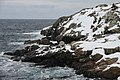 2011 - FEB 12 - 22 - NEWFOUNDLAND -070 Portugal Cove - St Philips (5452746113).jpg