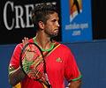 2011 Australian Open IMG 6391 (5448439812).jpg