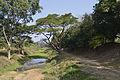 201401021028a (Hartmann Linge) Sukhothai Or Gate.jpg