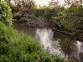 20140524 Maastricht river Geul in Meerssenhoven 13.JPG