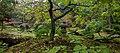 2015 1016 Japanese Garden Clingendael 07.jpg