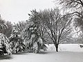 2018-03-21 12 51 35 View along a snow-covered walking path in the Franklin Farm section of Oak Hill, Fairfax County, Virginia.jpg