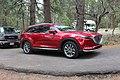 2018 Mazda CX-9 Soul Red Crystal Metallic paint.jpg